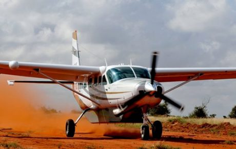 flying_safaris