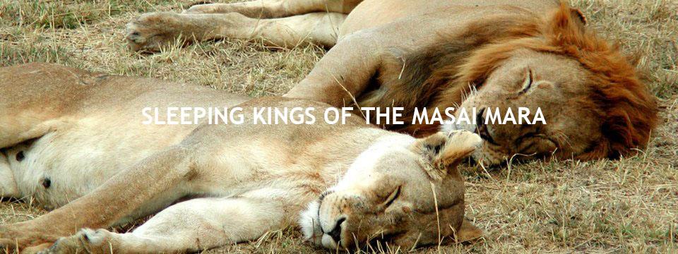 sleeping_kings1-2